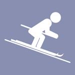 Icon Skialpin